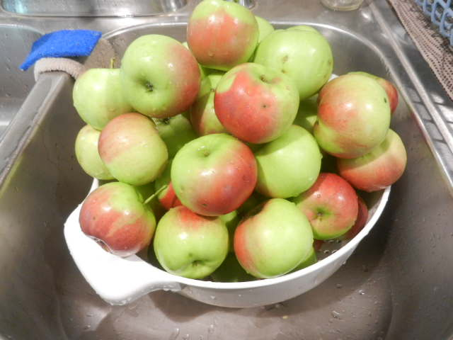 bowl of apples sitting on counter